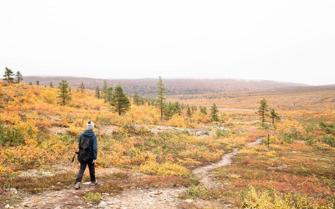 Urho Kekkosen kansallispuisto – Luulammen polku