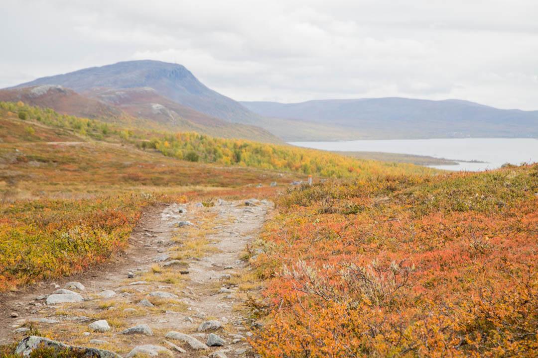 Mallan luonnonpuisto syksyllä ruska-aikaan