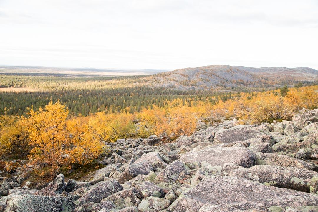 maisemat Pyhä-Nattaselta Sompion luonnonpuistossa