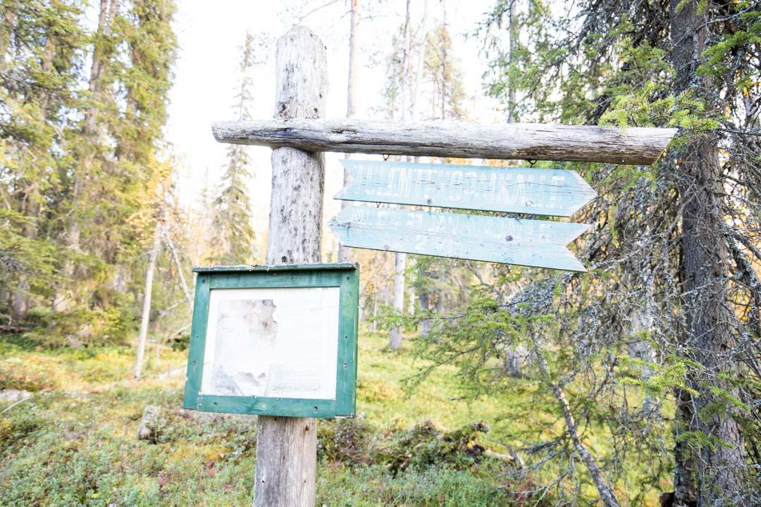 Sompion luonnonpuiston opaskyltti